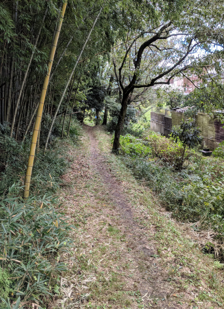Nara Michi Trail