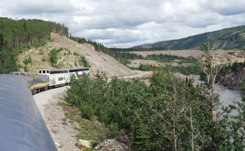 Train to Denali Park