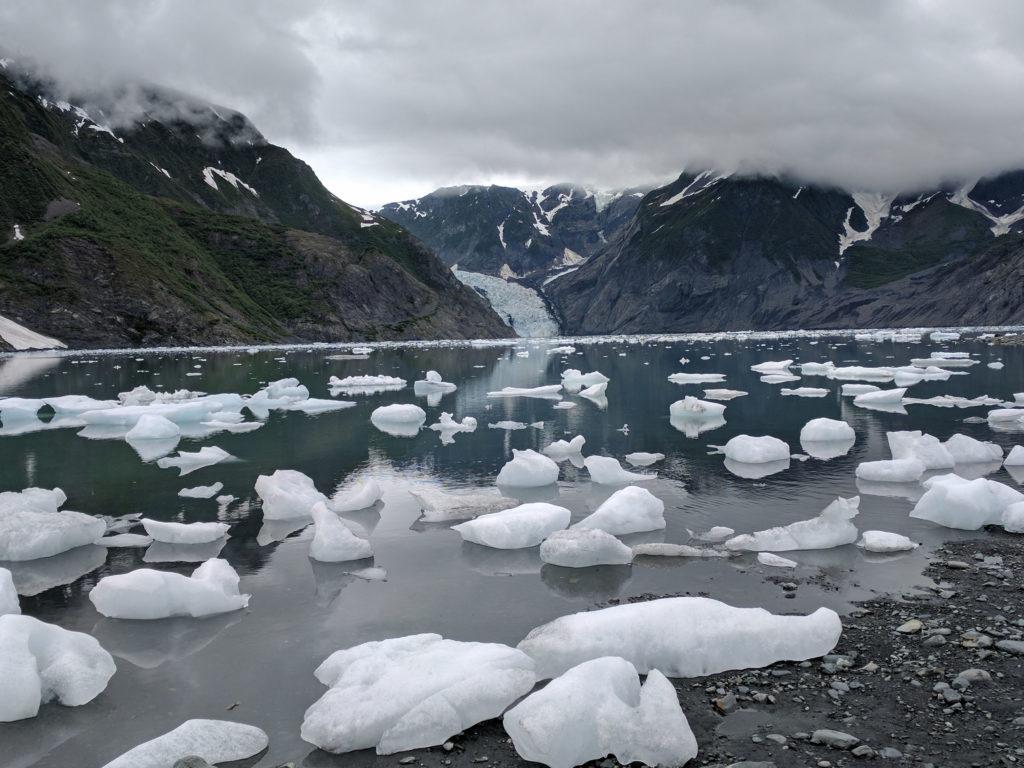 Glacier ice in bay